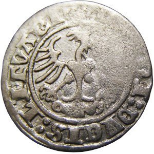 Zygmunt I Stary, półgrosz 1512, Wilno, DV/I/CIS - RZADKI