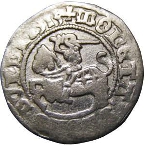 Zygmunt I Stary, półgrosz 1513, Wilno, pełna data