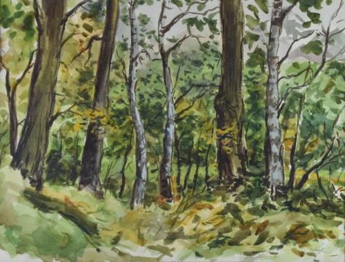 Władysław SERAFIN (1905-1988), W lesie