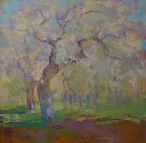 Daniel Gromacki, Wiosna w sadzie, 2020r.