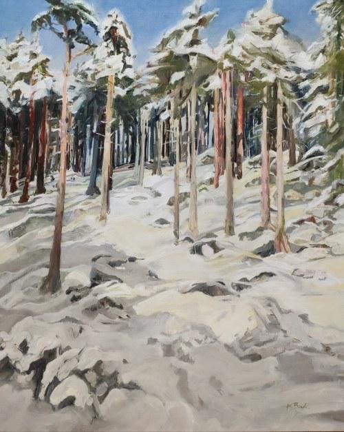 Katarzyna Bukowska, Zimowy las, 2021r.