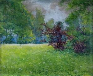 Teodor ZIOMEK (1874 – 1937), Wiosenna łąka