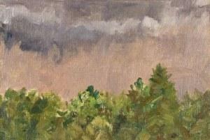 Michał Gorstkin WYWIÓRSKI (1861-1926), Zielone zarośla pod szarym niebem