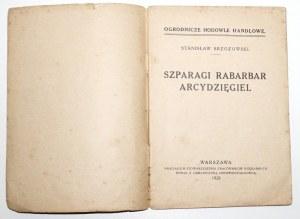 1928 - Brzozowski, SZPARAGI, RABARBAR, arcydzięgiel