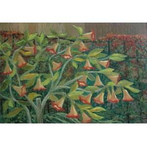 Jan Hrynkowski, (1891-1971) Datura w ogrodzie