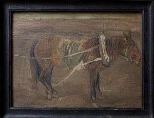 Jerzy Panek, (1918-2001) Koń