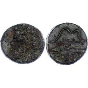 Ancient Greece Pantikapaion Tetrahalk 330 - 310 BC