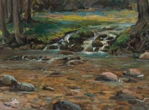 Stanisław Gałek (1876 Mokrzyska - 1961 Zakopane), Potok górski