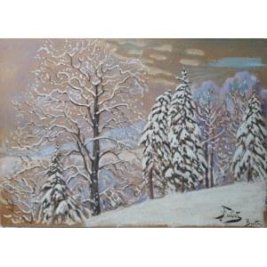 Julian Fałat, Pejzaż zimowy z Bystrej