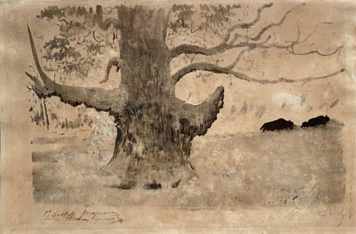 Leon Wyczółkowski(1852-1936), ''Dąb z żubrami w tle''