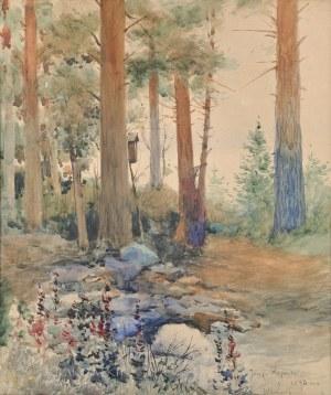 Józef RAPACKI (1871-1929),
