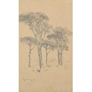 Julian FAŁAT (1853-1929), Sosny pinie (1881)