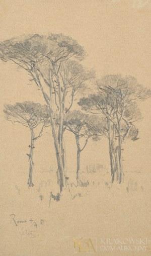 Julian FAŁAT (1853-1929),