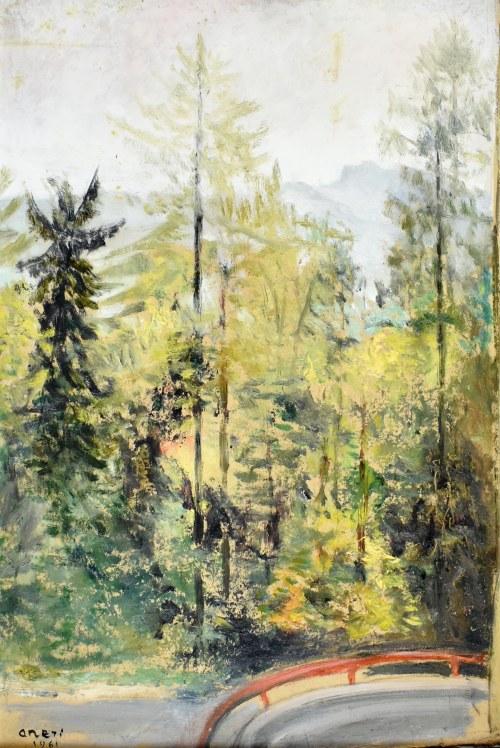 Irena WEISS - ANERI (1888-1981), Drzewa - widok serpentyn drogi do Szczawnicy, 1961