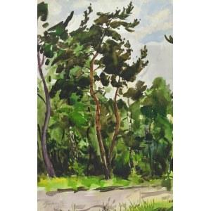 Władysław SERAFIN (1905-1988), Droga w lesie