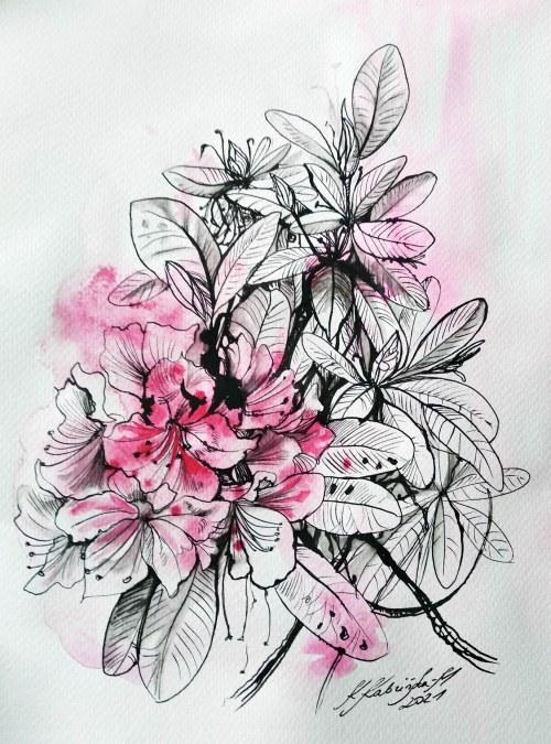 Katarzyna Kabzińska-Masionek (ur. 1993), Rododendrony, z serii: