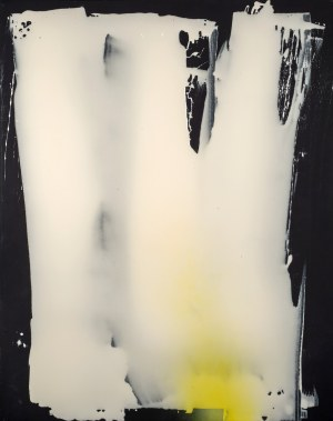 Bartosz KOKOSIŃSKI ur. 1984, Bez tytułu, 2016