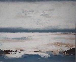 Iwona Majdańska, Cloud, 2021r.