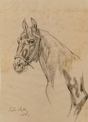 Tadeusz RYBKOWSKI (1848-1926), Szkic głowy konia i fragment nogi konia