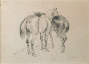 W. GABRIEL (XIX w.), Konie, ok. 1850