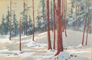 Stanisław JAWORSKI, XX w., Zimowy las