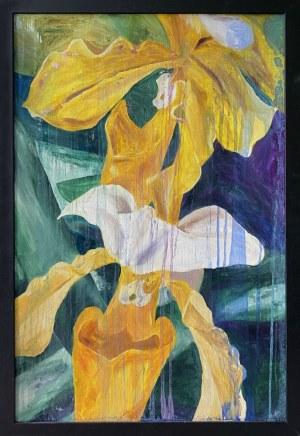 Natalia Dziedzic, Yellow Orchids