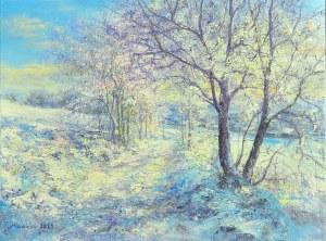 Małgorzata Rawicka, Zimowa Droga do rzeczki