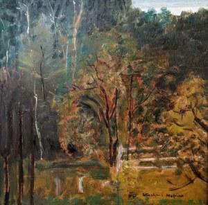 Wlastimil Hofman (1881 Praga - 1970 Szklarska Poręba), Park