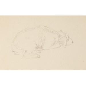 Józef Mehoffer (1869 Ropczyce - 1946 Wadowice), Odpoczywający pies – szkic do obrazu św. Huberta