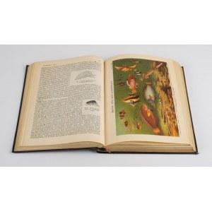 S. Orgelbranda Encyklopedja Powszechna z ilustracjami i mapami. Tom I-XVIII [komplet wydawniczy] [1898-1912]