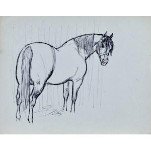 Ludwik MACIĄG (1920-2007), Szkic stojącego konia w ujęciu z prawego boku
