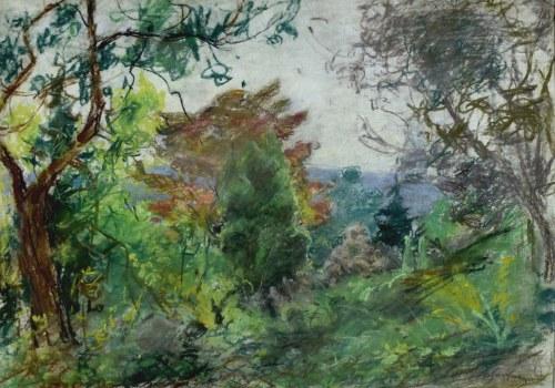 Władysław SERAFIN (1905-1988), Dziki ogród