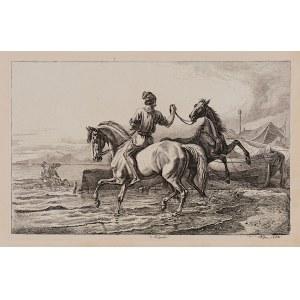 Johan Adam Klein (1792 - 1875), Zestaw 3 grafik - Sceny z końmi, ok. poł. XIX w.