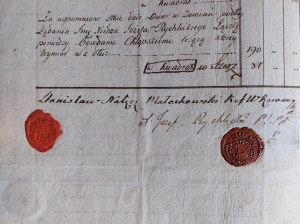 Stanisław Małachowski, Wotum za Konstytucję 3 Maja - Petrykozy