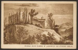 Janowiec, Widok ruin zamku w Janowcu od strony Oblas