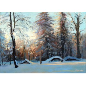 Małgorzata Gidel, Winter forest, 2021 r.
