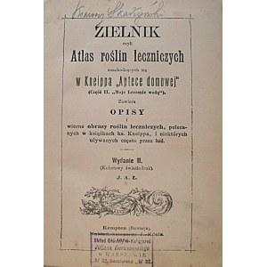 """ZIELNIK czyli Atlas roślin leczniczych znachodzących się w Kneippa """"Aptece domowej"""" (Część II..."""