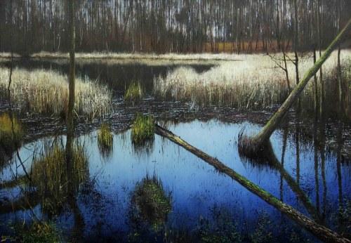 Konrad Hamada, Mokradła, 2021