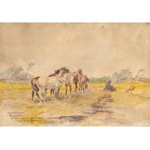 Rybkowski Tadeusz (1848-1926), Stare konie na pastwisku, 1925