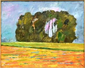 Marek NIEDOJADŁO(ur. 1954), Prześwit, 1999