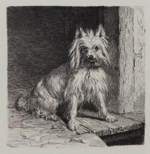 Carl Steffek, Piesek, Niemcy, lata 1870-1880