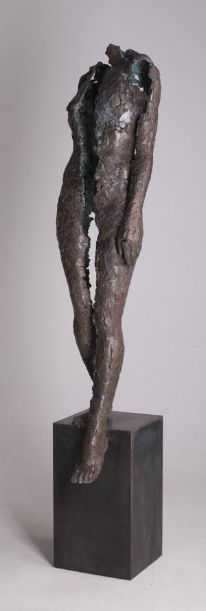 Adam Arabski (ur. 1978), Bez tytułu, z cyklu