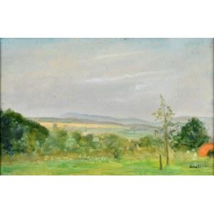 Irena WEISS – ANERI (1888-1981), Pejzaż, ok. 1965