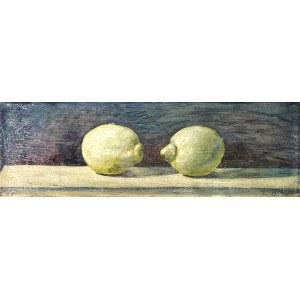 Andreas Schiller, Lemons