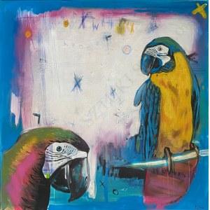 Piotr Gola, Parrots