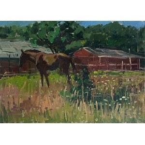 Sławomir J. Siciński, Koń na łące
