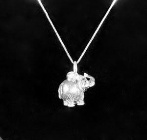 Wisior srebrny z łańcuszkiem