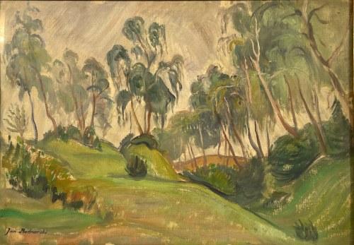 JAN BEDNARSKI(1891-1956), ''Las z południowej Francji''