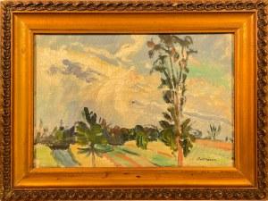 Jan Bednarski(1891-1956),''Pejzaż z południa Francji''