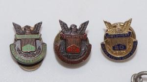 lot: odznaki amerykańskie 6 sztuk